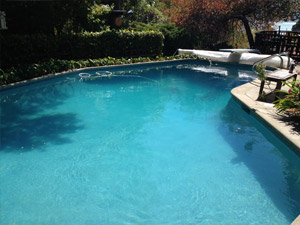 Pool with Algae Before Algae Clean